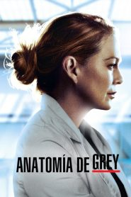 Grey's Anatomy (Temporada 17)