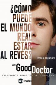 The good doctor (Temporada 4)